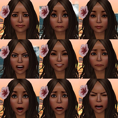 SL facial animations