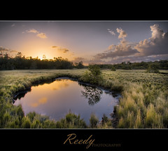 Feels Like Home (Reedy Photography) Tags: sunset reflection water grass clouds landscape explore frontpage hdr baysidebrisbane reedyphotography obramaestra imnotsurewhatelsetotaglol