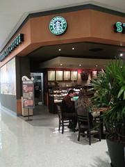 [Starbucks Anália Franco]