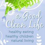 A Good Clean Life