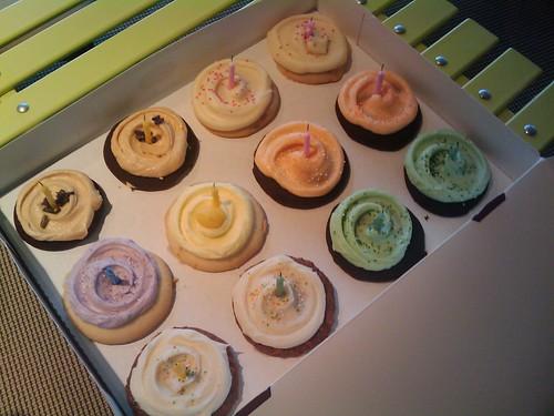 Vanessa's cuppycakes
