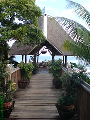 Path To Tranquillity (leszee) Tags: ocean sea beach nature island path philippines resort bohol to spa panglao tranquillity bingag panglaoislandnatureresortandspa dauisintheislandofpanglao pathtotranquility