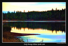 Early Morning Stillness Spider Lake (lhg_11, 2million views. Thank you!) Tags: sky canada nature reflections landscape britishcolumbia lakes silhouettes vancouverisland qualicum spiderlake nikond90