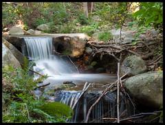 Cataratas en Riells (limondelcaribe) Tags: agua olympus catarata montseny riells e520 miriamdavid fotomisionesfm47 limondelcaribe