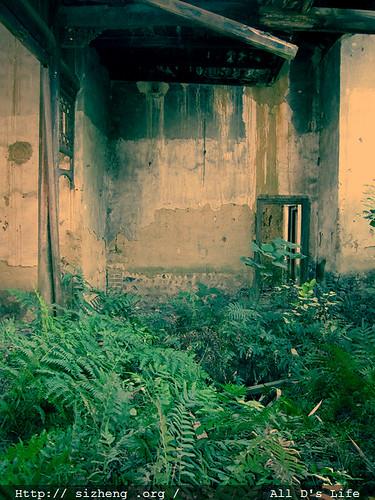 院内杂草丛生