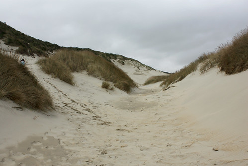 Sand Dune at Sandfly Bay