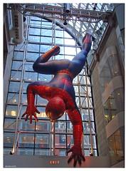 New York 2009 - The Amazing Spider-Man