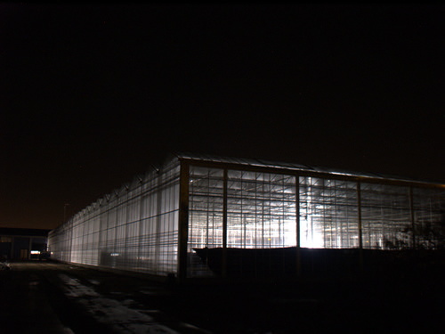 Empty greenhouse in the night