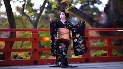 Iwai-mai  #6 (Onihide) Tags: kyoto maiko mapleleaf kitanotenmangu kamishichiken momijien naokazu ichiteru katsuru onihide iwaimai