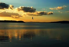 Feelings (Tati@) Tags: sunset lake friendship explore frontpage tati feelings passignanosultrasimeno annatatti daarklands iloveumbria