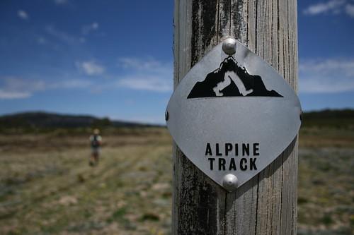 alpine_20091111_016