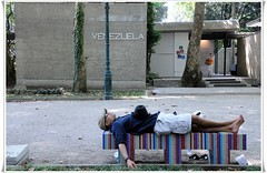 BIENNALE DI VENEZIA 2009. Siesta (magicoda) Tags: venice italy art bench nikon italia nap break foto arte venezuela tourist riposo artists siesta fotografia dslr visitor biennale venezia 2009 pisolino artisti turista panchina pausa veneto d300 visitatore operedarte biennaledartevenezia insidetheart dentrolarte biennale2009 makingworlds faremondi magicoda davidemaggi maggidavide