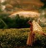 Prophetic Ray (Femininelure) Tags: flowers woman selfportrait female rainbow veil meadows romantic selectbestexcellence —obramaestra— sbfmasterpiece peregrino27newvision