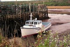 St Martins (Gloria1207) Tags: canada nature water pier boat dock mud stmartins newbrunswick poles emptiness earthwindandfire highanddry gmm1207 gloria1207