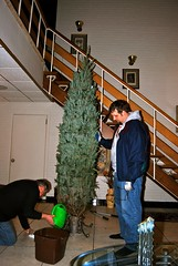 CSP & his dad setting up their tree