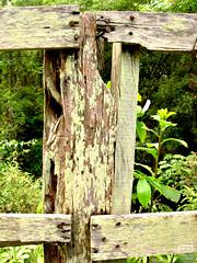 Cerca (Fernando Paes) Tags: paisagem cerca tronco madeira pregos