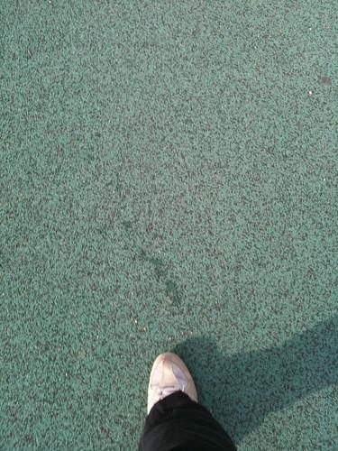 산책로 위를 걸으며