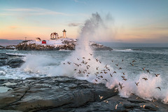 Nubble Wave with Sandpipers (BenjaminMWilliamson) Tags: attraction birds capeneddick coast colorful epic freezeframe icon iconic image landmark landscape lighthouse me maine newengland nubble nubbleisland ocean plovers scenery scenic sea seascape snow sunset surf tourism tourist wave winter york