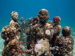 MUSA, Silent Evolution II (altsaint) Tags: 714mm gf1 islamujeres jasondecairestaylor musa mexico panasonic silentevolutionii underwater
