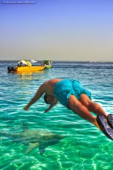 Summer Time * (Talal Al-Mtn) Tags: blue sea summer people fish man hot green beach yellow canon fun island shark boat cool shot time tan deep summertime kuwait 2009 kubbar q8 450d canon450d flickraward  talalamtn