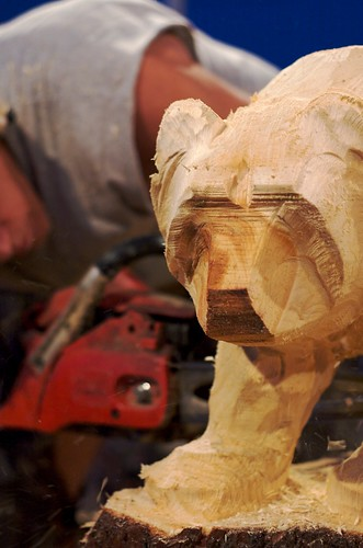 Chainsaw carving (3)
