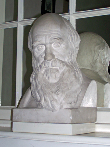 Darwin Bust, Darwin College, University of Cambridge