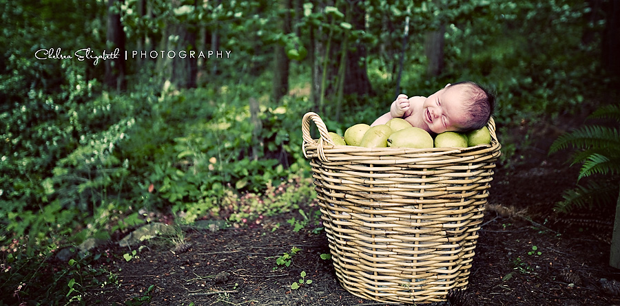 portland oregon newborn baby girl in forest in basket of pears