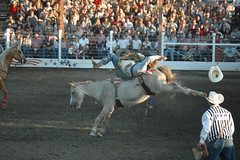 (yadam84) Tags: family camping summer horses cowboys oregon joseph spurs cowboy boots wranglers dirt rodeo chaps cjd rodeos wallowas buckedoff 8secondride