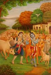 Krsna Lila Krishna Balarama - ISKCON desire tree 04 (ISKCON Desire Tree) Tags: lila krishna krsna yatra prabhupada sankirtan stoka radha disappearance aarti balaram jagannath chaitanya arjuna citra iskcon goswami gandharva sudama bhaktisiddhanta govardhana subal vishakha nrsimha srilaprabhupada damodar indulekha rupagoswami haridasthakur ujjvala jaghaimadhai bhaktivinodthakur madhumangala gaurkishoredasbabaji