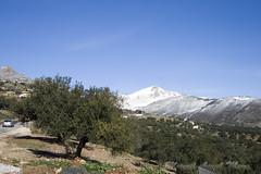 IMG_8006 (Miguel Angel Mora (GSi_PoweR)) Tags: espaa snow andaluca carretera nieve nevada sunday bosque granada costadelsol domingo maroma mlaga mountainroad meteorologa axarqua puertomontaa zafarraya sierraalmijara caosalcaiceria