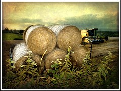 Bale me out ! (dingerthetwinger) Tags: countryside harvest olympus combine bales tyrone cookstown brigh e410