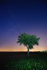 Starlight (Philipp Klinger Photography) Tags: pink blue light sky orange color colour tree green nature field yellow night rural germany painting way landscape deutschland star nikon europe hessen space flash bad galaxy milky philipp sigma1224mm hesse starlight nauheim klinger superaplus aplusphoto d700 dcdead vanagram