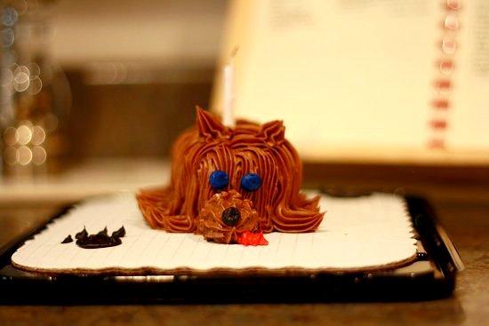 mom's dog cake