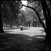 Hombre cruzando el bosque de Chapultepec