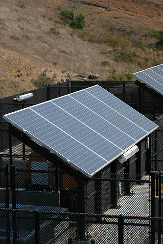 solar panels at marine mammal center