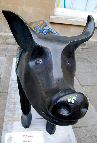 Pig in Clover: detail features
