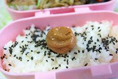 IMGP1905 (FromEast2005) Tags: bento japanesefood lunchbox ume   umeboshi