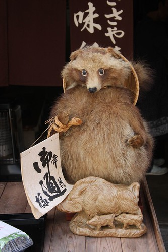 イノシシをお供におつかい The raccoon dog that works with a wild boar