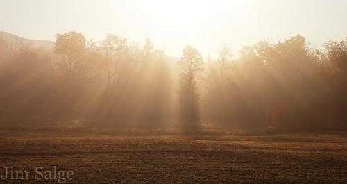 Rays Through The Mist