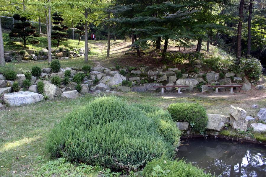 Lotus pond(2)