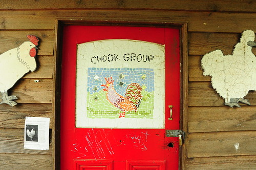 Chook group