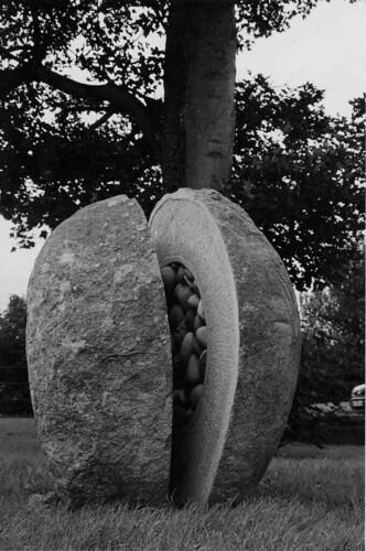 Seedstone, Greystones, Co Wicklow.1998