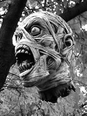 Booooooooooo!!!!! (Sean Castor) Tags: halloween dead head ghosts canonpowerhot