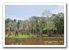 Parque Ecológico Janauary, Amazonas