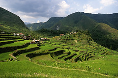 The Philippines (sebastien banuls) Tags: world voyage city travel sea copyright heritage field asian photography asia southeastasia photographie village rice paddy terrace south philippines terraces unesco worldheritagesite east pi manila cebu fields ricepaddies southeast makati agriculture ricefield 旅游 banaue batad unescoworldheritage filipinas ifugao riceterraces cordillera luzon mega paddies riceterrace philippinen philippine pasig ilhas copyrighted terraced ricecultivation 摄影 cordilleras filipijnen filippine フィリピン philippinecordilleras batade ifuago филиппины ilhasfilipinas cordilleraifugao riceterracesofthephilippine