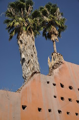 Medina walls of Marrakesh (Peter Gostelow) Tags: africa cycling northafrica adventure morocco marrakesh petergostelow thebigafricacycle
