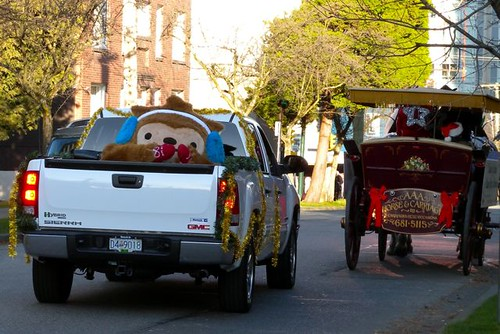 Quatchi Hitches a Ride