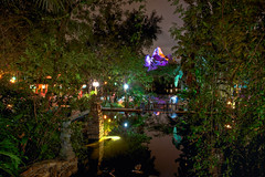Party at Animal Kingdom (Todd Hurley (Todd_H)) Tags: longexposure nightphotography bridge family reflection art canon dark fun photography amusement orlando lowlight dof florida disneyworld mickeymouse fl fullframe wdw waltdisneyworld hdr themepark animalkingdom waltdisney orlandofl expeditioneverest wdi lakebuenavista imagineering canon1740f4l waltdisneyworldresort canoneos5dmarkii canon5dmkii canon5dmark2 5dmkii 5dm2 5dmark2 canon5dmarkii canon5dii canon5d2 canon5dm2 5stardisneyaward thhphotography toddhurley canon1740f14l