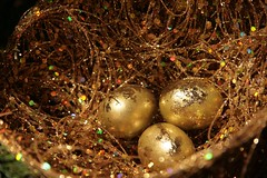 with gifts of gold (the billyllama) Tags: ny gold decoration rochester preferredplants goldeneggs holidaygreetings