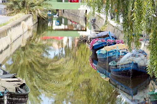 Palmar-Canal